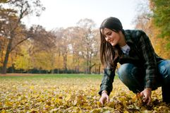Young woman in fall season Stock Photography