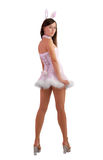 Young woman in fancy dress of hare, rear view Royalty Free Stock Photo