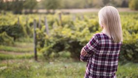 Young woman farmer looks at his garden or vineyard stock image