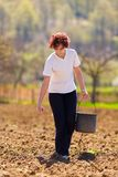 Young woman farmer planting. Seeds mixed with fertilizer from a bucket Royalty Free Stock Image
