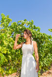 Young woman farmer tastes a glass of red wine. Stock Images