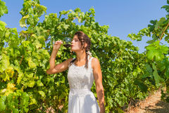 Young woman farmer tastes a glass of red wine. Stock Photography