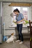 Young woman feeding dog. Housewife with dog jack russell Royalty Free Stock Photography
