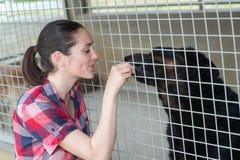 Young woman feeding dog on street Royalty Free Stock Photo