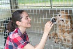 Young woman feeding dog on street Stock Photo