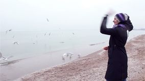Young woman feeding seagulls on the beach stock footage