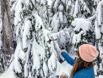 A young woman feeding whiskyjack and stellar jay birds out of her hand while snowshoeing along the Bowen Island Lookout trail on C. Ypress Mountain, in British royalty free stock photos