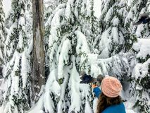 A young woman feeding whiskyjack and stellar jay birds out of her hand while snowshoeing along the Bowen Island Lookout trail on C. Ypress Mountain, in British stock photography