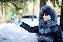 Young woman feeding winter birds Stock Image