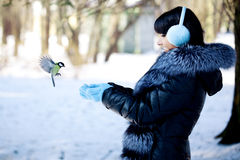 Young woman feeding winter birds Royalty Free Stock Image