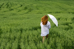 Young woman in a field. Royalty Free Stock Images