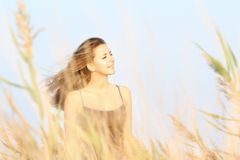 Young woman in field Stock Images