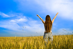 Young woman in field Royalty Free Stock Photo