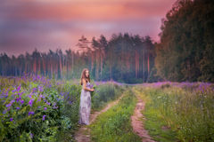 Young woman in a field Royalty Free Stock Photos