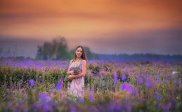 Young woman in a field stock photography