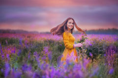 Young woman in a field Stock Photos
