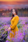 Young woman in a field Royalty Free Stock Photo
