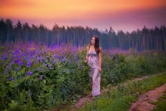 Young woman in a field Royalty Free Stock Image