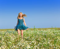 Young woman in the field of chamomiles Royalty Free Stock Images