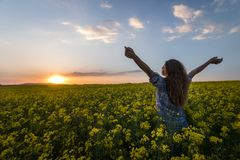 Portrait of beautiful woman in a field of coleseed in bloom. Young woman in a field of Cole seed in bloom in sunset. Freedom and ecology concept stock photos