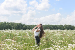 Young woman with a field with daisies Stock Images