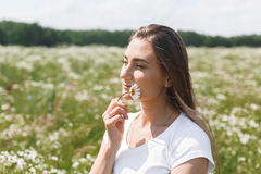 Young woman with a field with daisies Royalty Free Stock Images