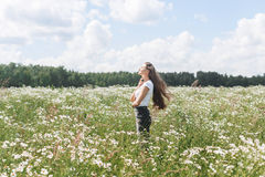 Young woman with a field with daisies Royalty Free Stock Photography