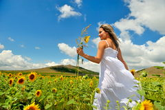 Young woman on field in summer Stock Photography