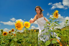 Young woman on field in summer Royalty Free Stock Photos