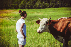 Young woman in a field surrounded by cows. A young woman is standing in a field surrounded by cows Royalty Free Stock Photo