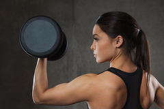 Young woman flexing muscles with dumbbells in gym. Fitness, sport, exercising, training and people concept - young woman flexing muscles with dumbbells in gym Stock Photography
