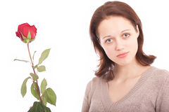 The young woman with a flower. Portrait. The young beautiful woman with a rose stock photo
