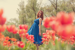 Young woman in flower field Stock Photos