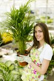 Young woman in flower garden Stock Photos