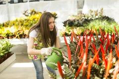 Young woman in flower garden Stock Photos
