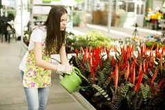 Young woman in flower garden Stock Photo