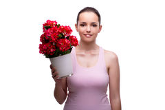 The young woman with flower pot isolated on white Stock Image
