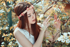 Young woman in a flowered orchard Royalty Free Stock Image