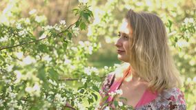 Young woman and a flowering tree. A young woman is in a spring park stock footage