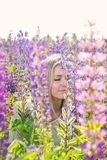Young woman in flowers. Beautiful blonde young woman in a field with blooming lupines royalty free stock photography