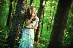 Young woman in forest Stock Images