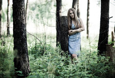 Young woman in a forest Royalty Free Stock Photo