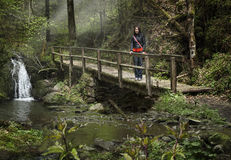Young woman in forest walk on a bridge Stock Photography