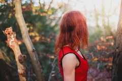 Young woman in the forest Royalty Free Stock Photos