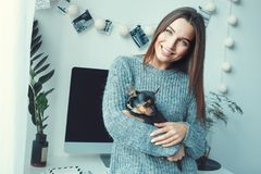 Young woman freelancer indoors home office concept casual style toy terrier Royalty Free Stock Images
