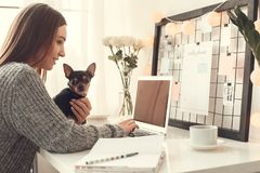 Young woman freelancer indoors home office concept winter atmosphere sitting with pet working. Young female freelancer at home office winter sitting working stock photography