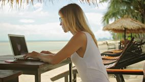 Young woman freelancer sitting at the sunbed with a laptop stock video