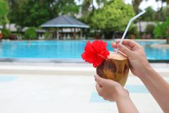 Young woman with fresh coconut cocktail. At resort Royalty Free Stock Photography