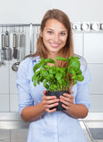 Young woman with fresh herbs in her kitchen Royalty Free Stock Photography