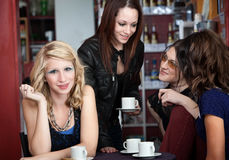 Young Woman with Friends Stock Image